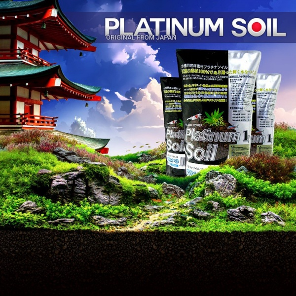 Platinum SOIL Powder 8l