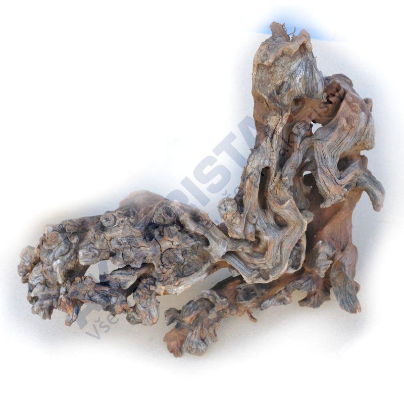 Coral driftwood akvarijní kořen