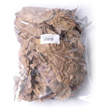AKVARISTA.cz Listy mandlovníku mořského (Terminalia cattapa) megapack 60g