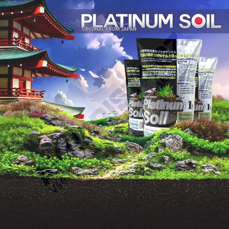 Platinum SOIL Powder 3l